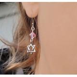 Silver & Swarovski Star of David Earrings