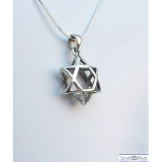3D Sterling Silver Star of David Necklac