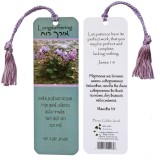 Longsuffering Scripture Bookmark from Israel