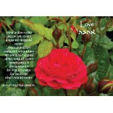 Love Scripture Greeting Card from Israel