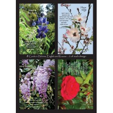 Set Scripture Greeting Cards from Israel